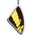 Кулон, Papilio thoas, 51 мм