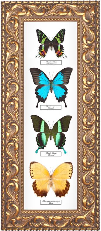 Набор из 4-х бабочек, 27*64 см, 180025