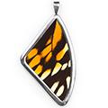 Кулон, Papilio zagreus, 51 мм