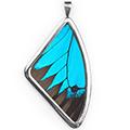 Кулон, Papilio ulysses, 51 мм