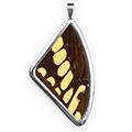 Кулон, Papilio thoas brasiliensis, 51 мм